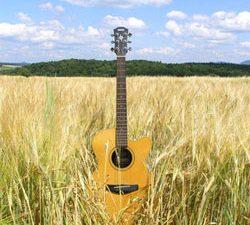Votre guitare part en vacances
